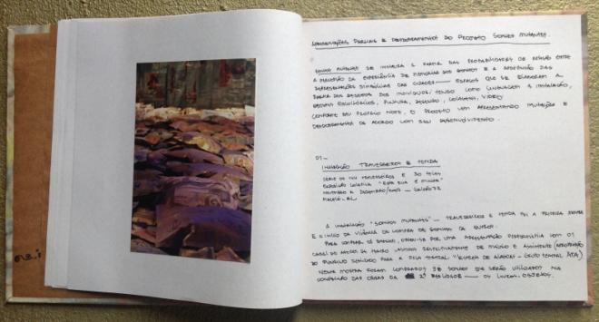 Projeto Sonhos Mutantes | Série Travesseiros | Ddaniela Aguilar