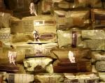 Sonhos Mutantes – série Travesseiros – Círculo de meninas - Ddaniela Aguilar